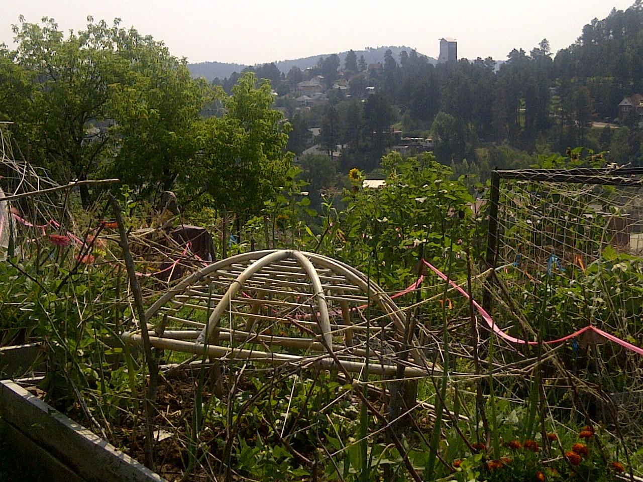 Lead Residents Turn Mining Buffer Zone Into Community Garden | SDPB ...