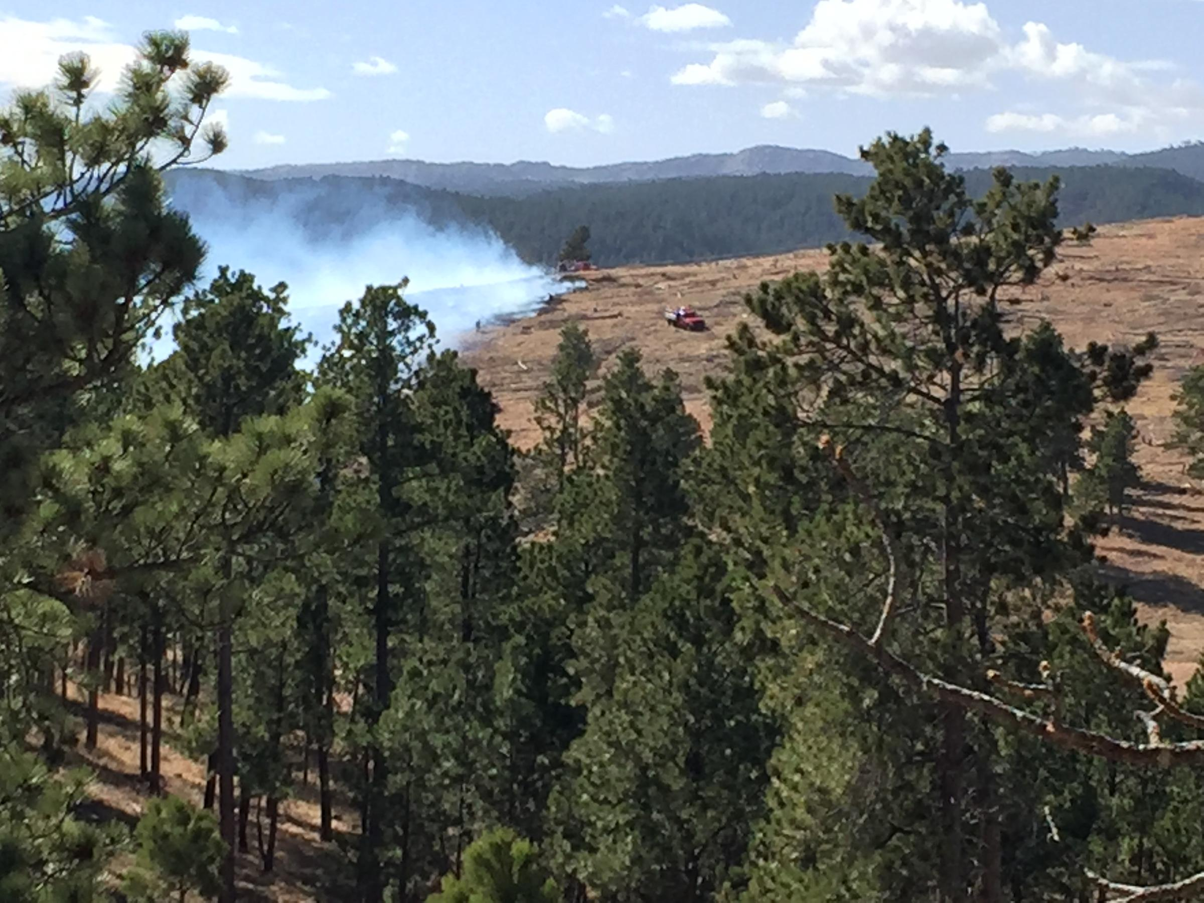 Pretty Flower Fire Evacuations Lifted