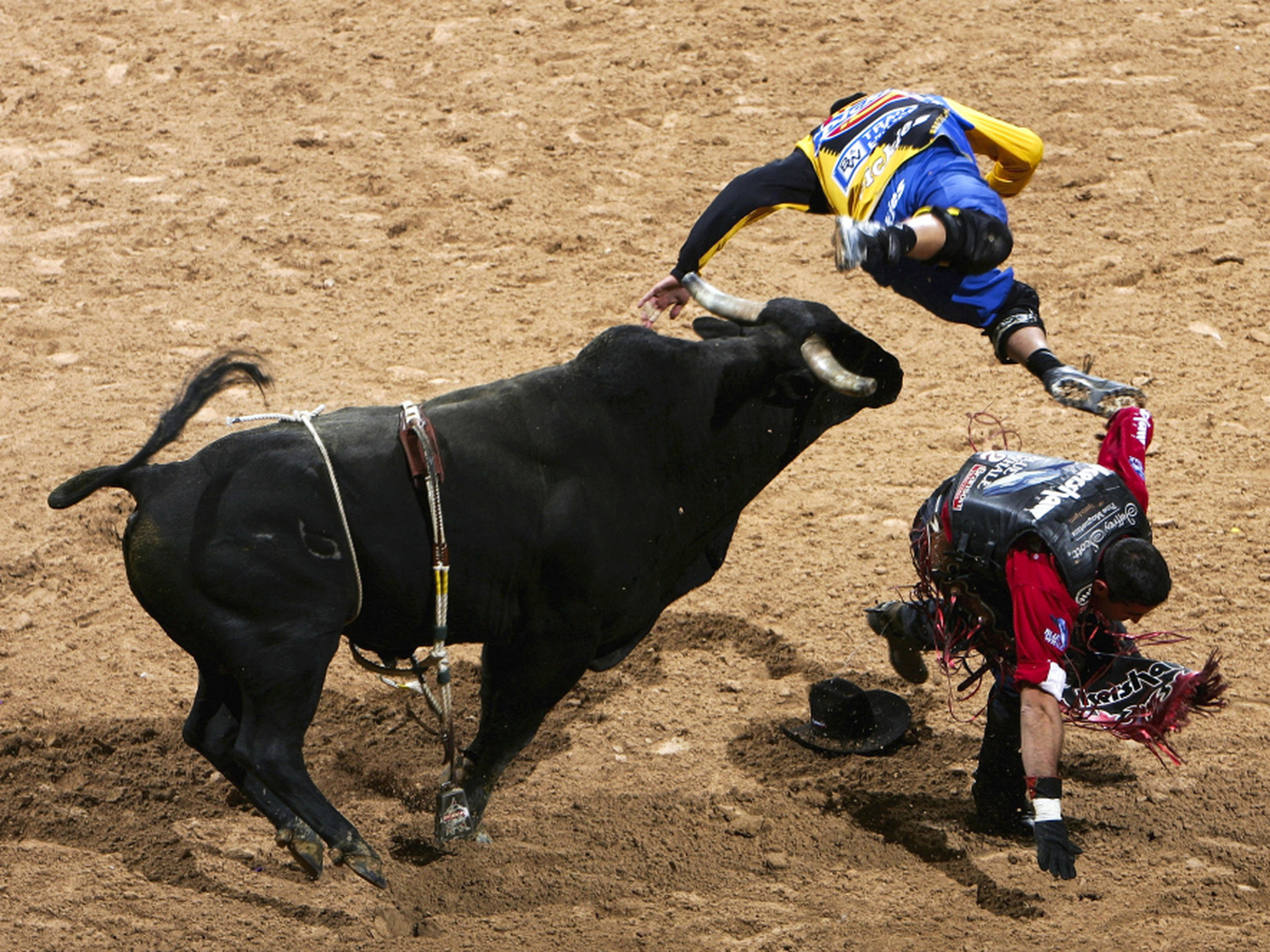 Rodeo Bucking Bulls http://www.nhpr.org/post/rodeo-circuit-bucking-bulls-and-broken-bones