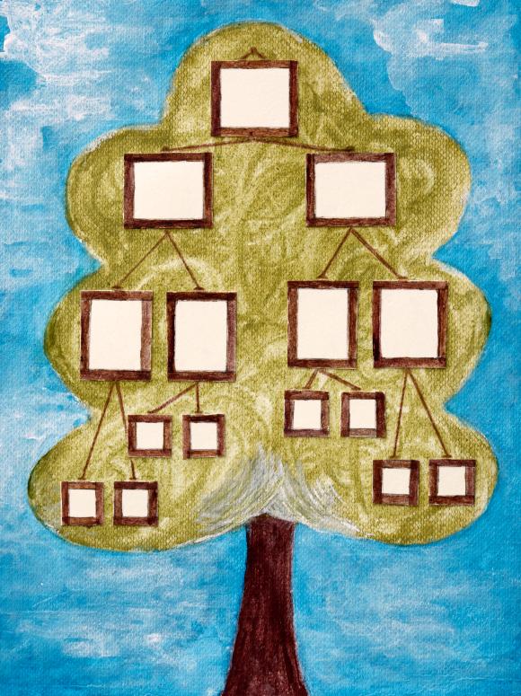 Семейное дерево своими руками не нарисованное