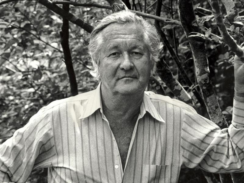 an introduction to the life of william styron When william styron died at the age of 81 in 2006, almost thirty years had passed since his last substantial work of fiction that novel was sophie's choice, which came out in 1979, a notable commercial and.