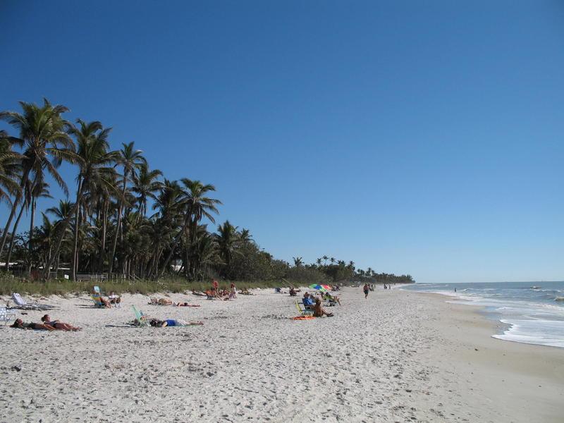Hurricane matthew blamed for red tide in southwest florida for Naples tides for fishing