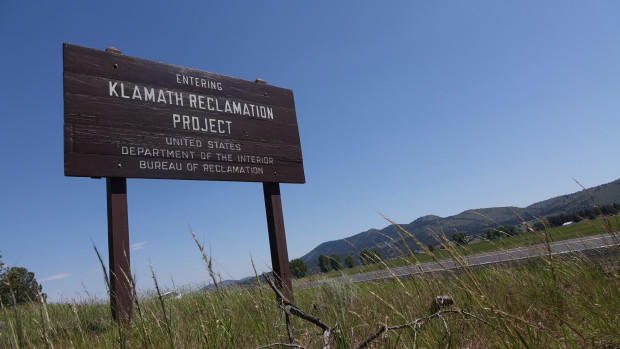 4 Dams On The Klamath River Are One Step Closer To Coming Down