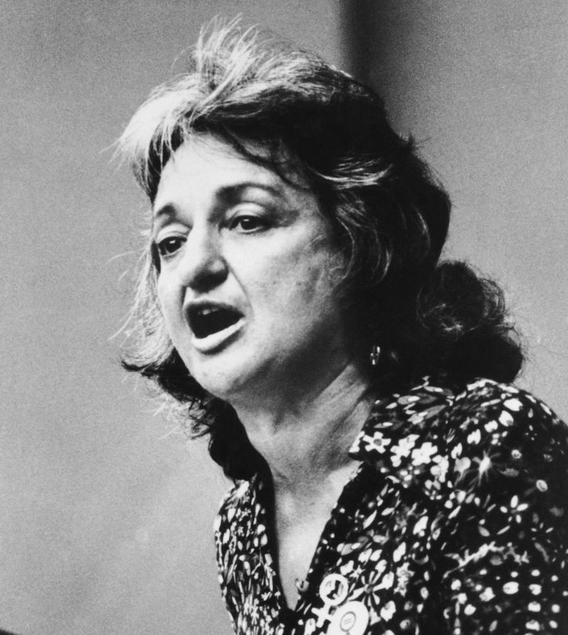 the life and contributions of betty friedan Summary in his unauthorized biography of betty friedan, betty friedan and the making of the feminist mystique, historian daniel horowitz contradicts friedan's assertion that prior to authoring the feminine mystique she.