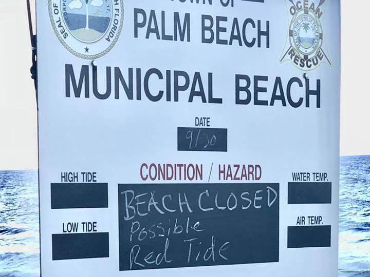 Possible Red Tide Closes Beaches On Floridas Atlantic Coast Wusf News