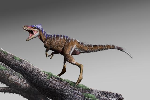 Paleontologists Find An Ancestor Of T.Rex In Utah. It's Small.