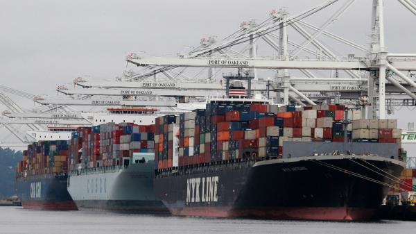 Container ships are positioned under cranes at the Port of Oakland in Oakland, Calif. Ships carrying cargo have introduced rash-causing parasites and the Asian clam, which has altered the food web of San Francisco Bay.