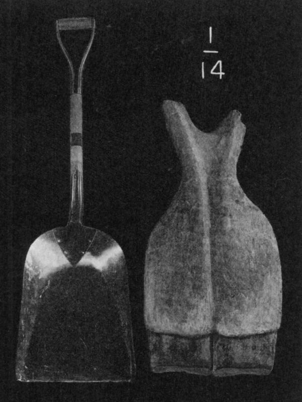 Shovel (left) jaw bone (right).