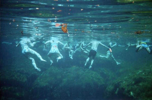 """Snorkeling group in <a href=""http://www.google.com/search?q=cenote&um=1&ie=UTF-8&tbm=isch&source=og&sa=N&hl=en&tab=wi&biw=1056&bih=663"">cenote</a>. Quintana Roo, Riviera Maya, Mexico"""