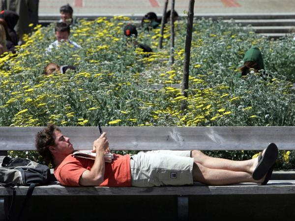 Even when we're relaxing, we're multitasking. A UC Berkeley student with his mobile device.