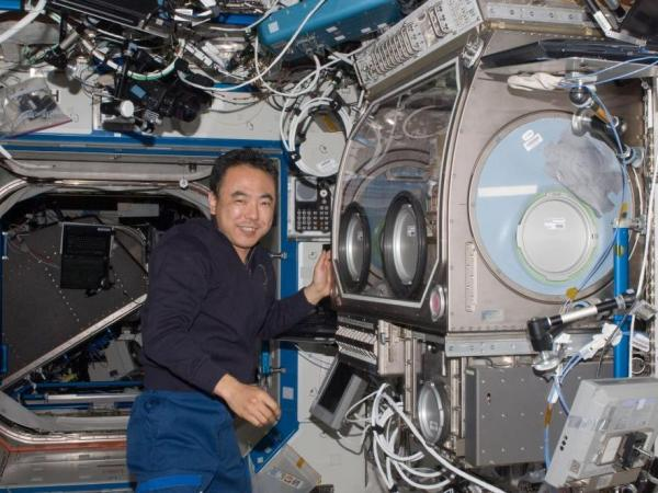 Japanese Astronaut Satoshi Furukawa works near the Microgravity Science Glovebox aboard the International Space Station on June 30, 2011. The unit allows space station crew members to assemble and operate science experiments in a controlled environment.