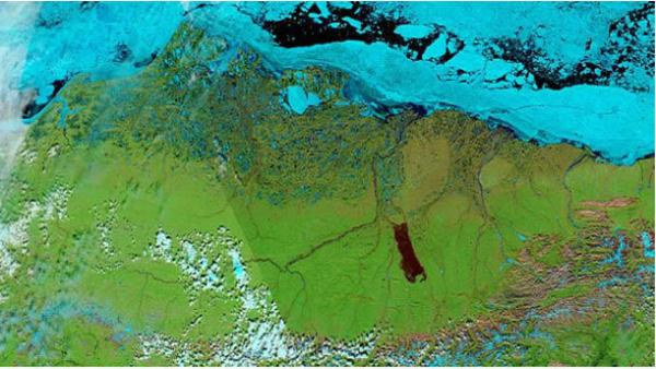 A satellite image of the burn scar left by the Anaktuvuk River Fire.  Source: NASA