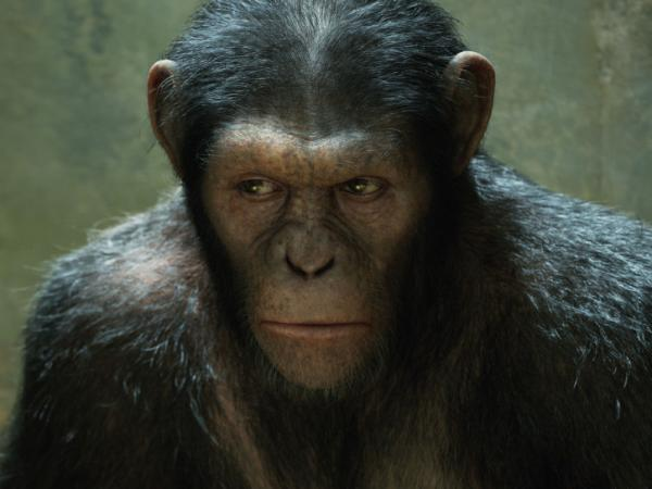 Andy Serkis plays Caesar in <em>Rise of the Planet of the Apes</em>. Caesar is entirely computer-generated.