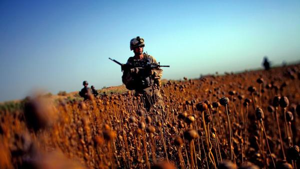 U.S. Marines patrol with Afghan forces  through a harvested poppy field in Northern Marjah in southern Afghanistan's Helmand province. Ten years after the fall of the Taliban, progress on U.S. pledges to help Afghanistan is mixed.