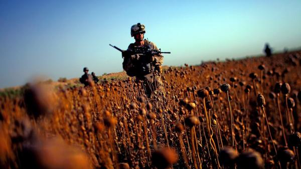 <p>June, 2011: U.S. Marines patrol with Afghan forces through a harvested poppy field in Afghanistan's Helmand province.</p>