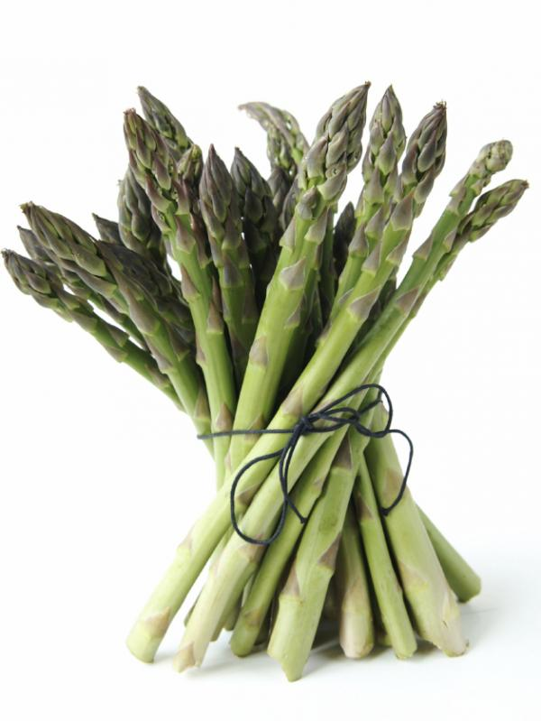 <p>Is asparagus sexy? PETA thinks so</p>