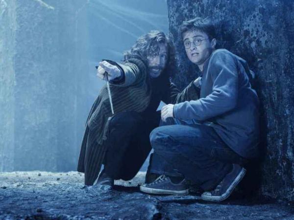 Oldman played Sirius Black to Daniel Radcliffe's Harry Potter in the blockbuster franchise.