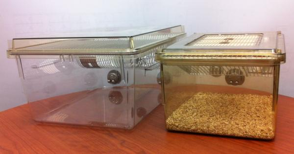 The standard rat cage used in the U.S. (right) has 140 square inches of floor space. One interpretation of the new guidelines says this cage wouldn't be big enough to hold a male rat, a female rat and their babies. Instead, labs would have to house the rat family in a larger cage, like the 210-square-inch one on the left.