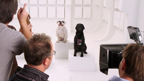 "To produce a teaser for Volkswagen's Super Bowl ad campaign, trainers edited barking dogs into a performance of ""The Imperial March"" from <em>Star Wars.</em>"