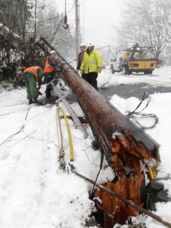 A crew of linemen working for Puget Sound Energy remove a power pole that fell down after a tree covered in ice fell on a transmission line near a substation in January in Olympia, Wash. Weather and tree branches cause 40 percent of power outages in the U.S.