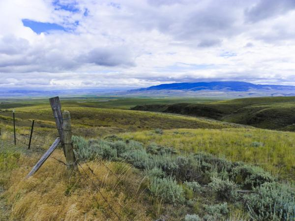 Montana's wide-open spaces are slightly more crowded than they used to be, and not all residents are happy about sharing.