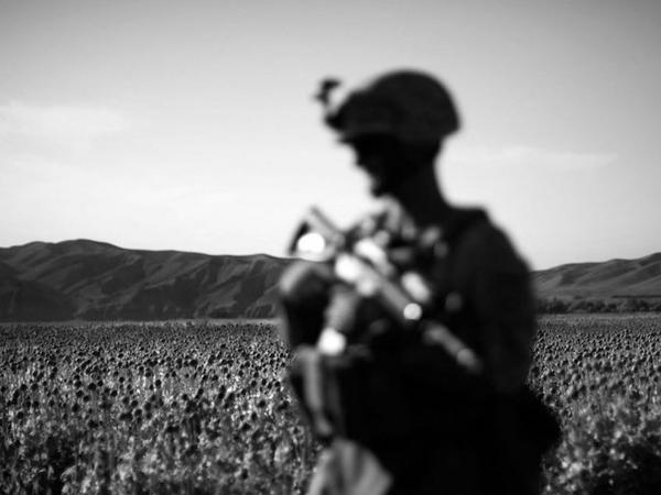 The men from Bravo Company, 1st Battalion, 5th Marine Regiment, are based in the lush farm fields of Sangin District, Afghanistan.