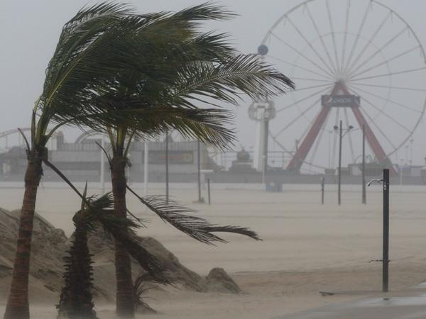 Wind blows against palm trees on a beach in Ocean City, Md., on Saturday.