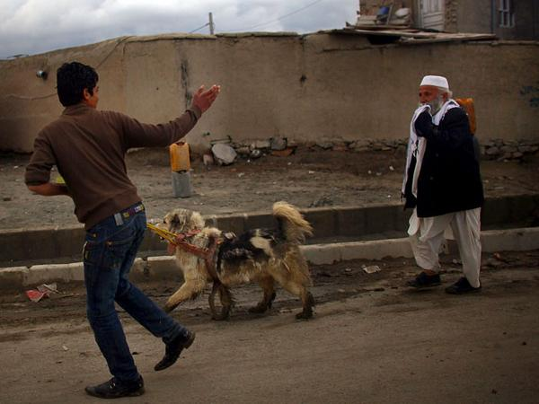 What does daily life in Kabul, Afghanistan, look like?