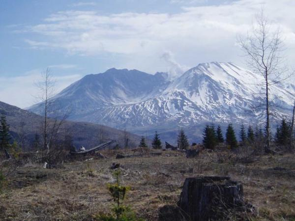 View of Mount St. Helens from Coldwater Ridge. Photo by Tom Banse