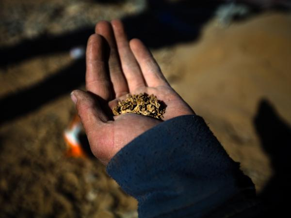 Some Mongolians are striking out on their own. This kind of mining is technically illegal, but many Mongolians do it in order to supplement their incomes. A prospector in the South Gobi shows off the results of two days of labor — a good-sized palmful of pure gold nuggets.