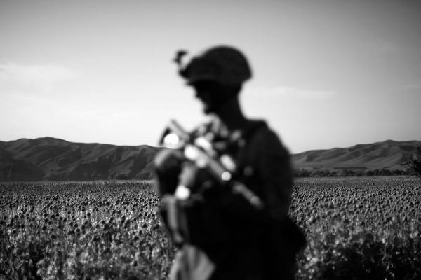 The men from Bravo Company, 1st Battalion, 5th Marine Regiment, from Camp Pendleton, Calif., are based in the lush farm fields of Sangin District in the Helmand River Valley in southern Afghanistan. A main source of revenue for the Taliban comes from this region during poppy harvest.