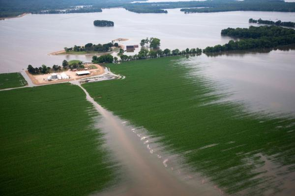 MAY 19: Floodwaters from the Yazoo River creep across fields of crops near Yazoo City, Miss.