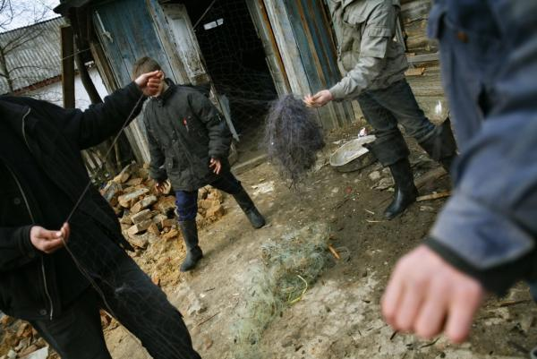 Ukrainian youngsters prepare a net for illegal fishing in contaminated waters in the village of Zorin, near the 19-mile exclusion zone around the Chernobyl plant, in 2006. The Chernobyl explosion spread a plume of radioactive smoke across thousands of square miles.