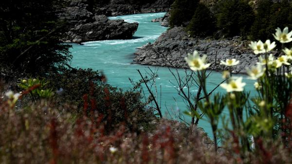 The Baker River is one of two waterways that would be dammed in a proposed hydroelectric project in the fabled Patagonia region of Chile. This section of the river would become a reservoir under the plan.