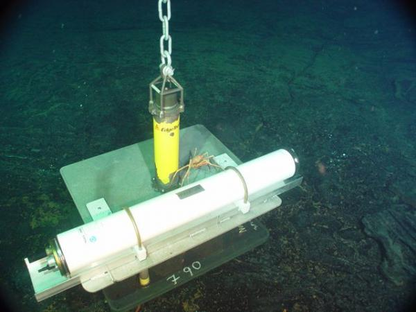 Hydrophone deployed at Axial Seamount. By Bill Chadwick, Oregon State University.