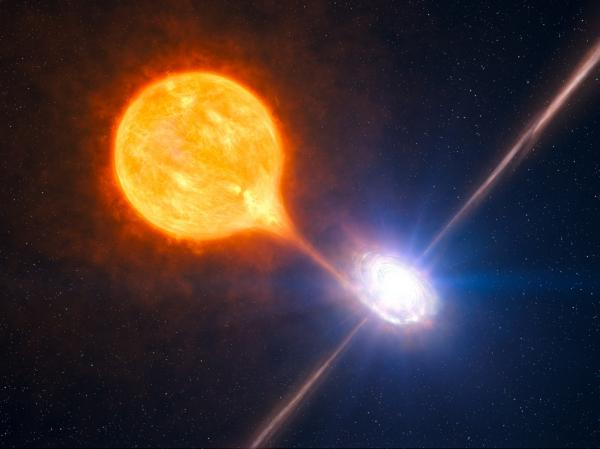"A black hole and its massive pair of jets is seen in association with a growing microquasar in this artist's impression <a href=""http://www.eso.org/public/images/eso1028a/"">based on multiple sources of telescope data</a>."