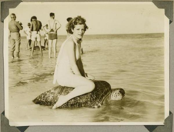 Riding a sea turtle, OK? (Mon Repos beach, Australia, circa 1930)