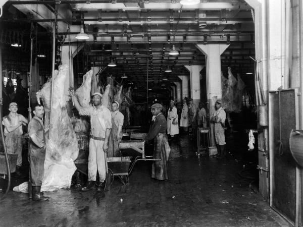 Men at a slaughterhouse stand near hanging beef carcasses, late 1940s.