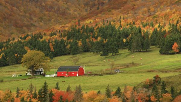 <p>The money is only part of the challenge facing school lunch programs who want to expand contracts with local farms.</p>