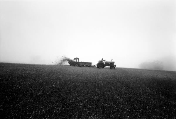 From the series <em>Sending Milk,</em> a project documenting Vermont family farms.