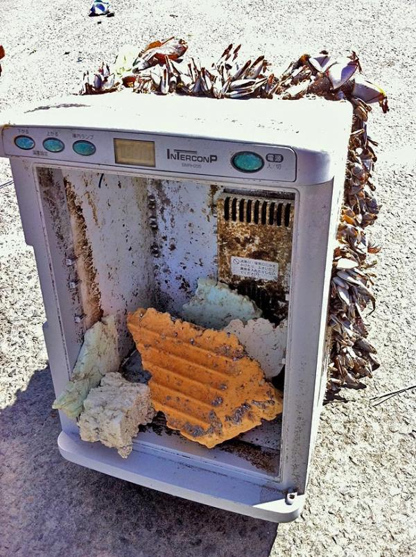 Beach cleanup volunteers found this refrigerator on Long Beach with Japanese labels on July 5. Photo courtesy of Shelly Pollock