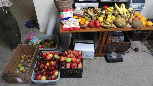 Rescued food waiting to be delivered.