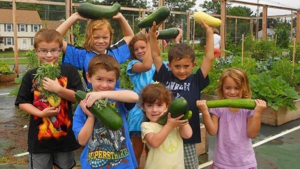 Students enjoy the fruits of their labors in Wallingford.