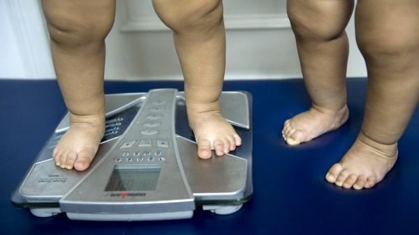 Childhood obesity is on the rise in many countries and overuse of antibiotics is now on the radar as a possible factor in the epidemic. Here 18-month-old twins are weighed in a nutritionist's office in Colombia.