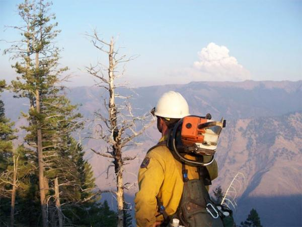 The influx of firefighters to a wildfire can offset economic damage to tourism and natural resources. Photo courtesy US Forest Service