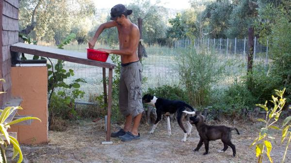 Apostolos Sianos, 31, quit his Web designer job in Athens to help establish the Telaithrion eco-commune. Here he mixes food for the commune's dogs.