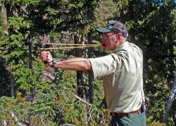 "USFS wildlife biologist Kurt Aluzas demonstrates ""aversive conditioning."" Photo by Tom Banse"