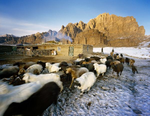 Some relatives of the Kuruman family stay in the same mud-and-thatch house throughout the year. For a regular Kyrgyz family in the region, Takayama explains, aging parents will descend from the mountains and move to a more permanent village home, while their children continue the nomadic way of life.