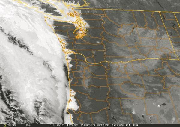Forecasters say some coastal mountain areas in the Northwest could see up to eight inches of rain this weekend. Satellite image via National Weather Service