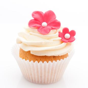This is a small photo of a vanilla cupcake. If this were the old design, you'd be squinting right now.